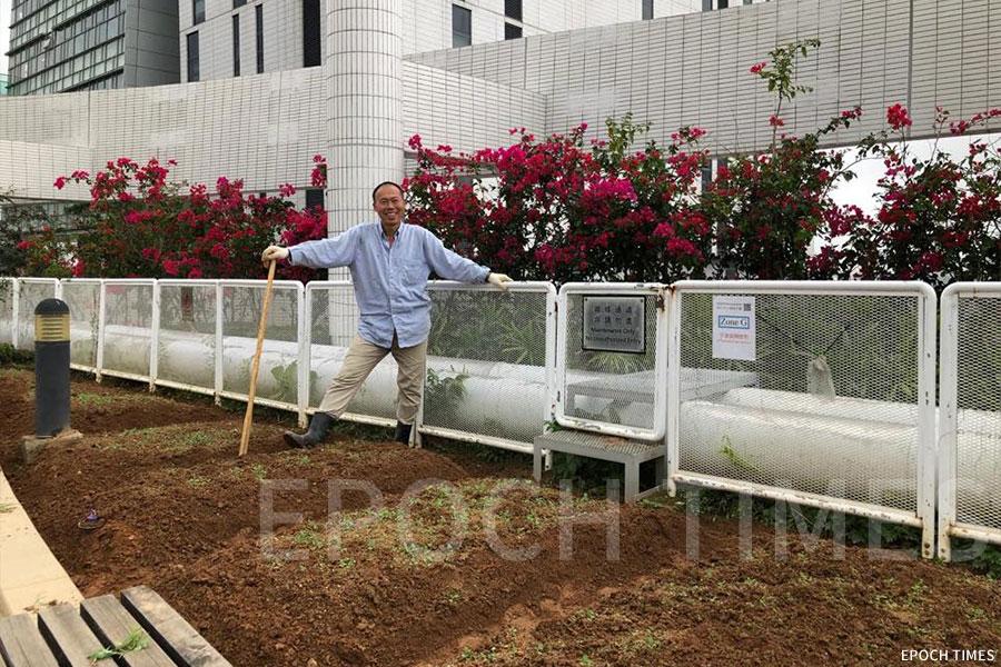 黃如榮在城市大學擔任「Grow」種植計劃種植導師,在李達三葉耀珍學術樓(AC2)天台實踐「生產型天台農場」。(受訪者提供)