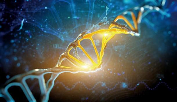 哈佛的研究者稱他們找到了動物體內控制肢體再生的DNA開關,為人類肢體再生研究道路又鋪上了一塊基石。( k_e_n / Fotolia)