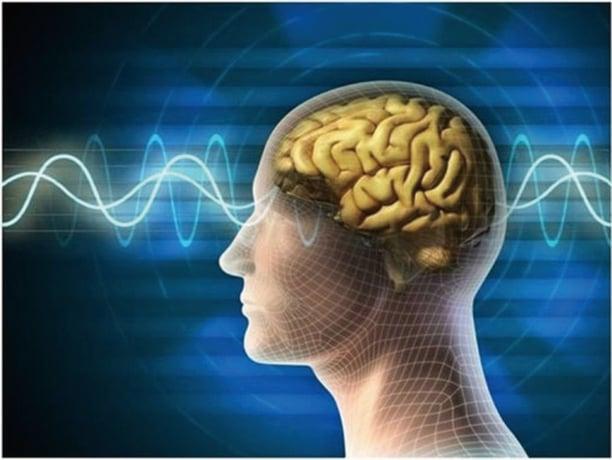 最新研究顯示,人類大腦原來也有地磁感應力,可以感知南北,但是人類自己感覺不到,也無法運用這種能力。(fotolia)