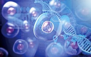 研究:細胞會記錄自身成長全過程