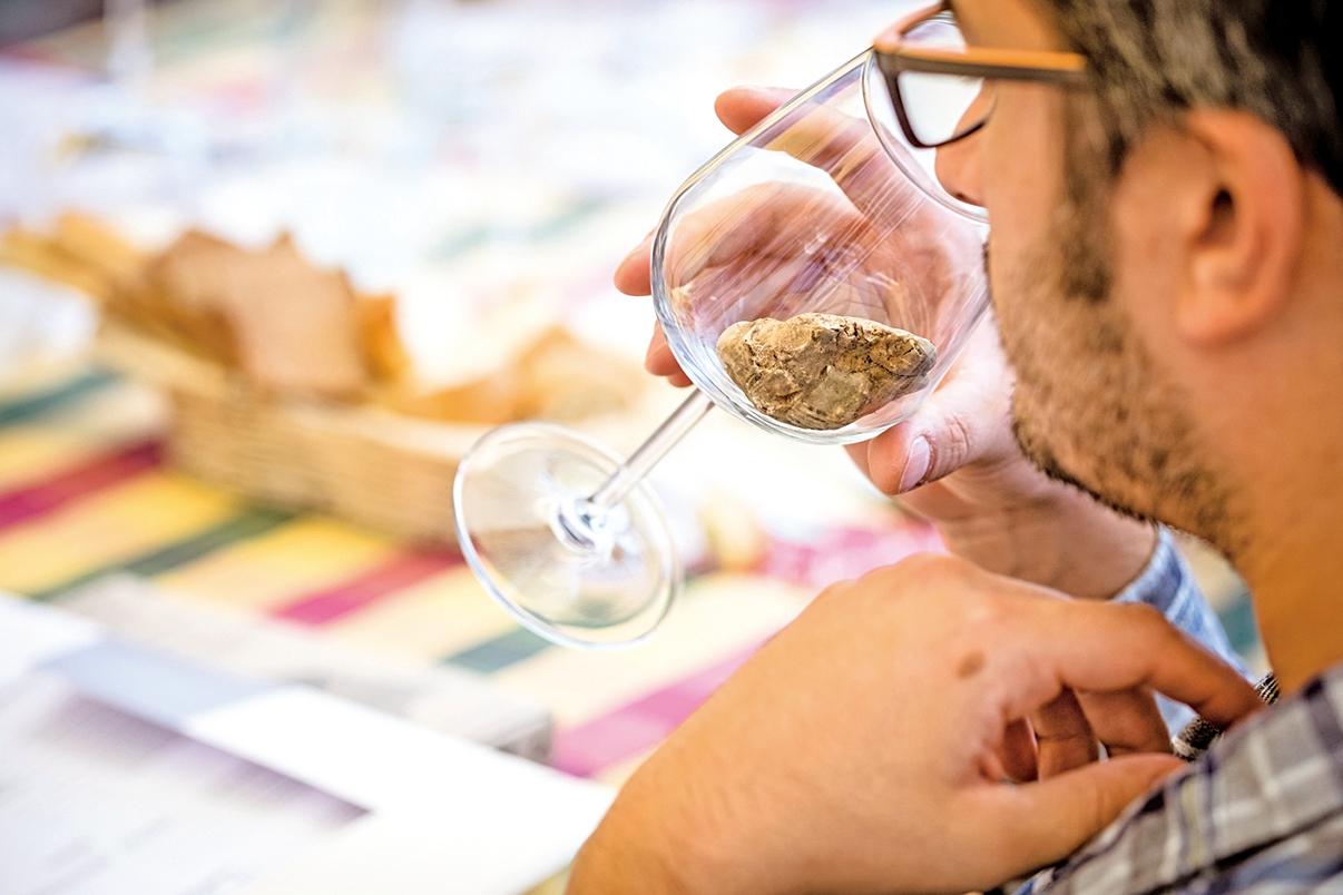 用葡萄酒杯裝松露,可以更細緻地聞到香氣。
