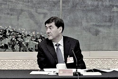 圖為中共發改委前副主任、國家能源局前局長努爾白克力。(Getty Images)