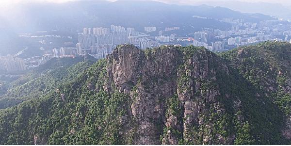 香港主權移交後20多年,面對社會氛圍變遷,核心價值備受衝擊,獅子山仍然是不少港人的精神依歸。(讀者提供)