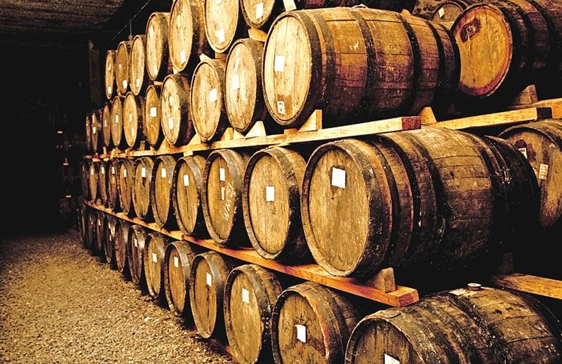 每個葡萄酒廠,都不能缺少存放的酒窖。