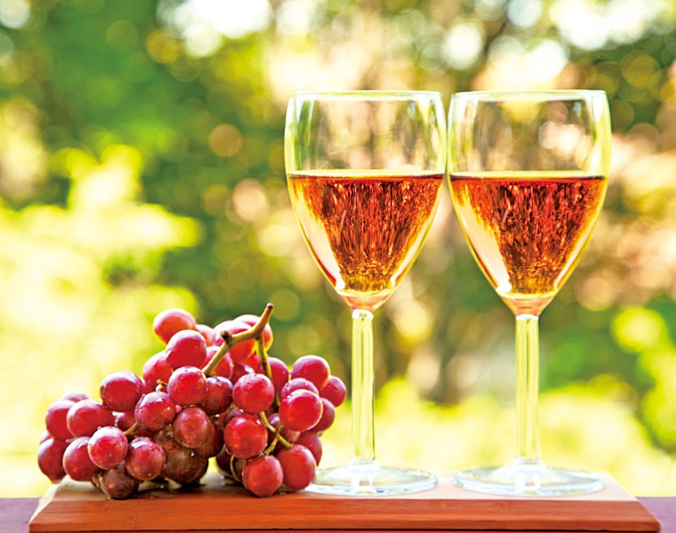 古代修士把耕作葡萄園和釀造葡萄酒當作侍奉上帝的神聖工作。