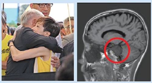 立法會議員陳淑莊驗出腦內有4.5厘米腫瘤,押後到6月11日判刑。(蔡雯文/大紀元、陳淑莊Facebook)