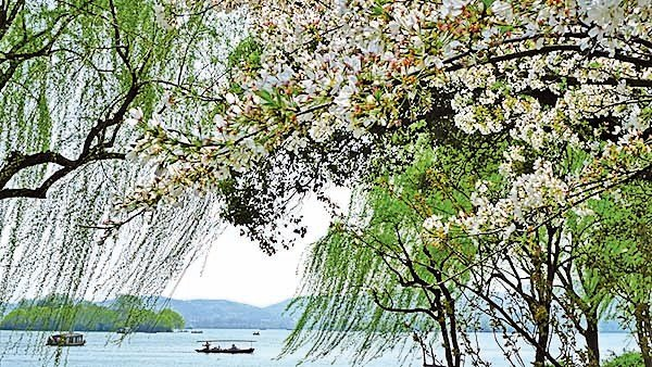 杭州西湖蘇堤(大紀元資料室)