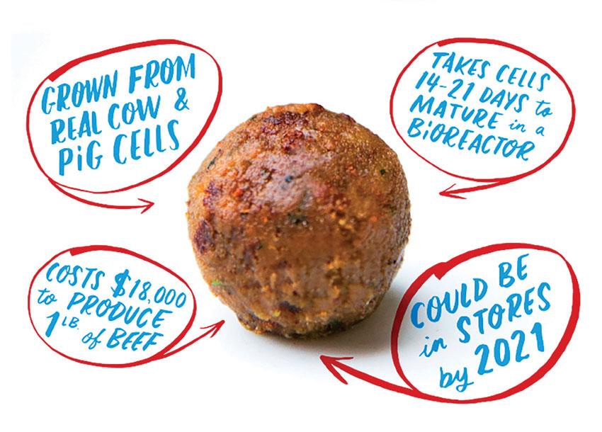 創投資本支持食品新創技術 從新型蛋白質到發酵真菌