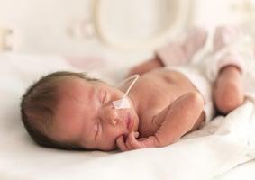 研究:極低體重早產兒 母親社經地位影響孩子未來認知發展
