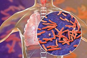 研究發現細菌「超級膠水」祕密