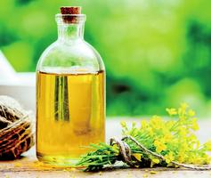 日專家:豆油等精煉油傷害腦 引發多種現代病