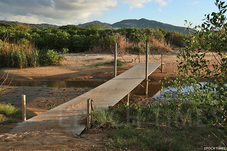 泥灘上跨越鴨仔坑的小橋。(陳仲明/大紀元)