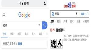 網友爆另類「試金石」 用Google、百度搜尋「這個詞」