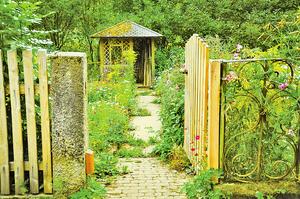 曾老師家的花園