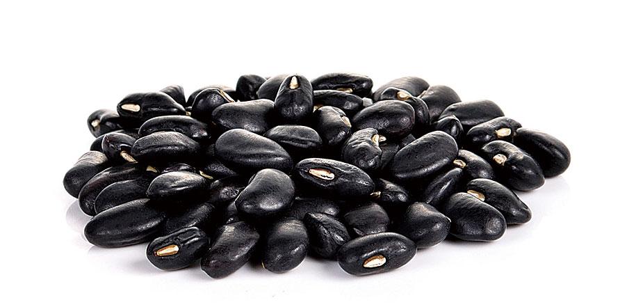 黑豆味甘性平,歸脾、腎經,不僅形狀像腎,還有補腎養胃、補中益氣。