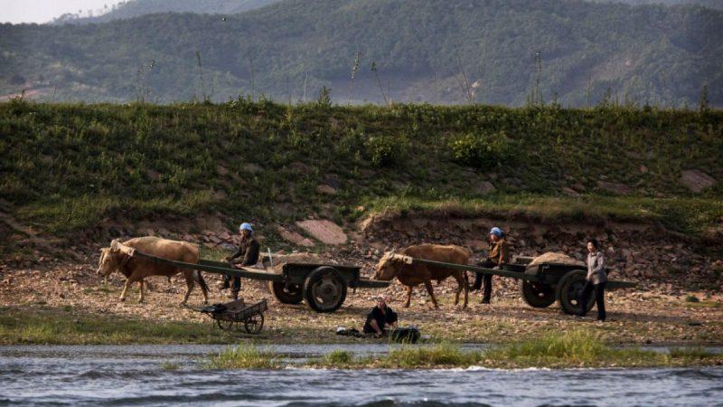 形勢嚴峻 北韓被曝川金二會時向越南求糧援