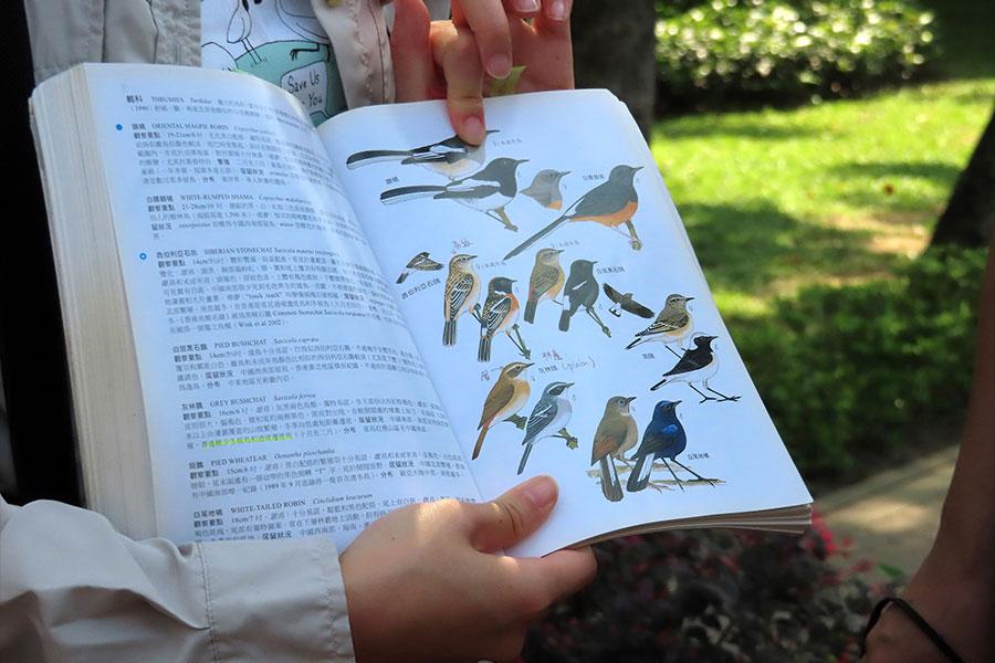 在地研習室:隨香港觀鳥會認識市區雀鳥。(主辦方提供)