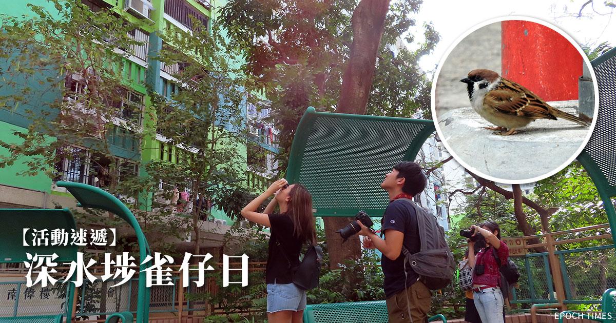 在地研習室:參加者遊走深水埗區觀察雀鳥。(主辦方提供)