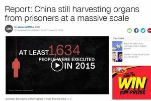 全球媒體密集報道中共秘密大量活摘器官