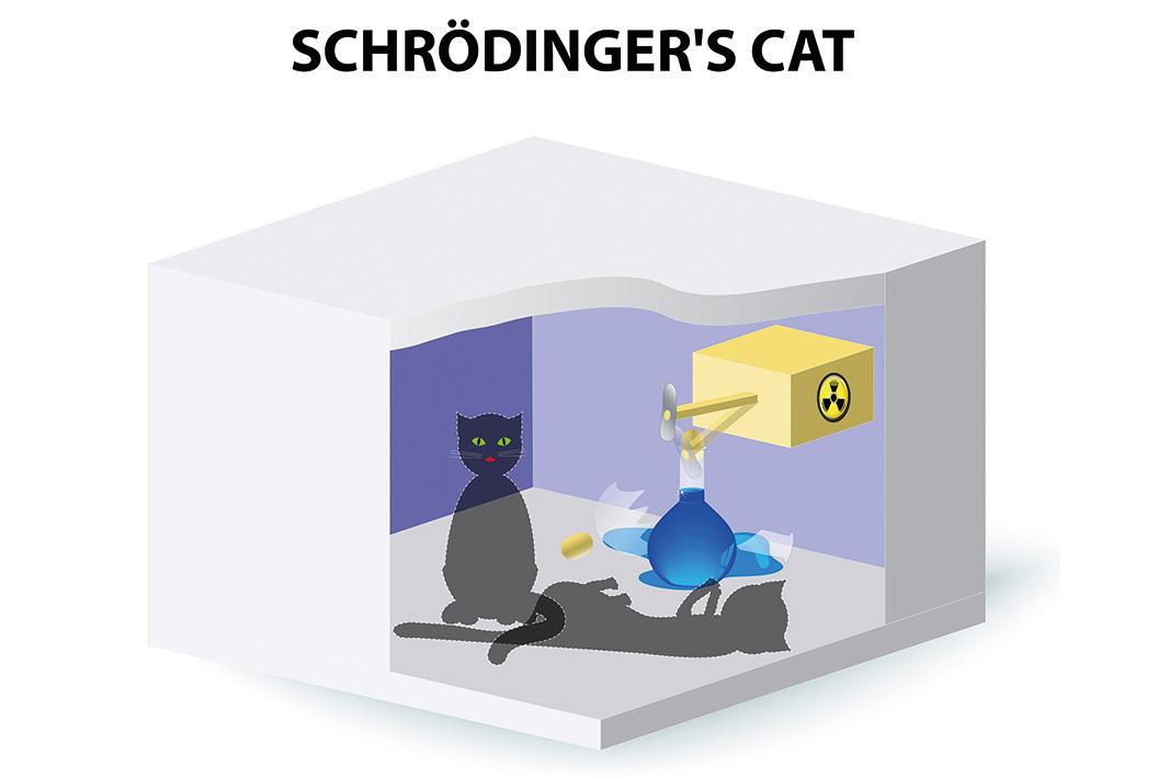 薛定諤貓處於一種又活又死的疊加態的示意圖。(Shutter Stock)