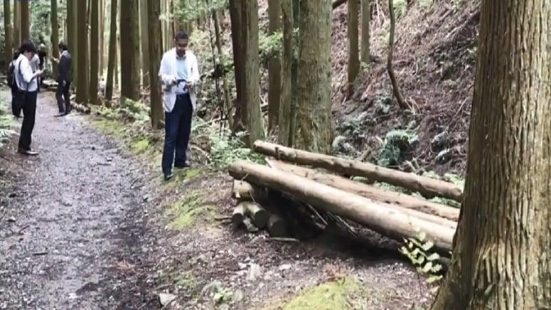 犯嫌在山裏以背包為枕,躺在用木材設置的長凳上被逮捕。(影片截圖)