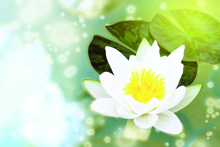 【心靈陽光】心存善良提升抗病力 效果堪比阿司匹靈