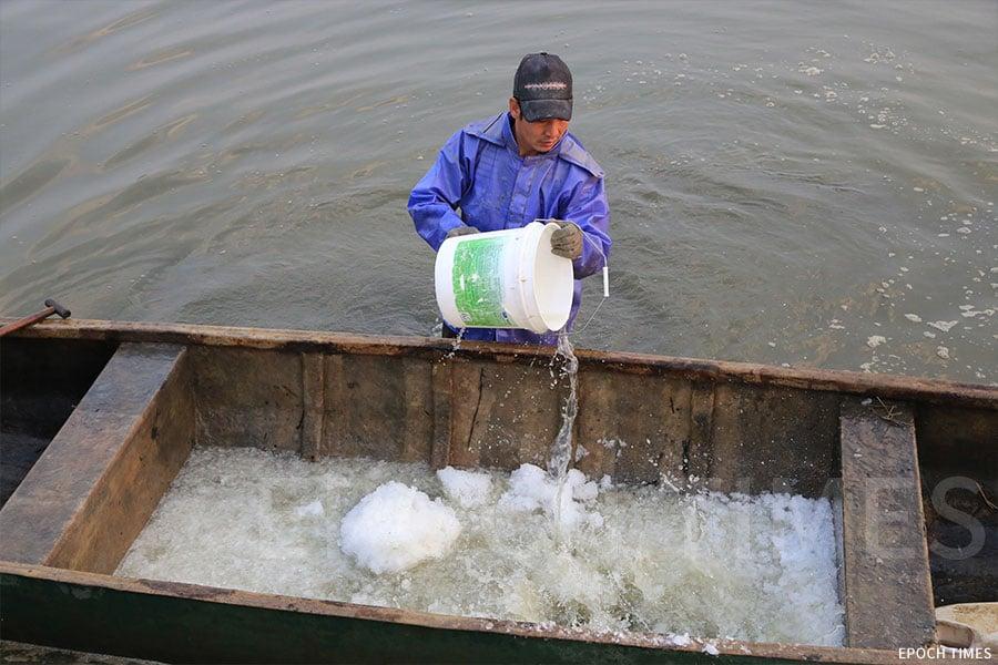 小艇內放入冰及鹽水。(陳仲明/大紀元)