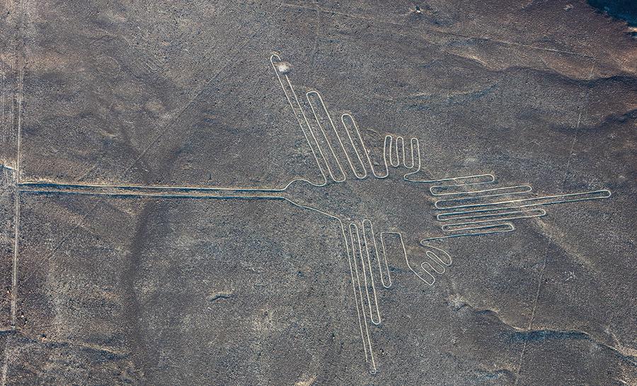 神秘納斯卡地畫再添謎團 其中某些鳥類或來自異域