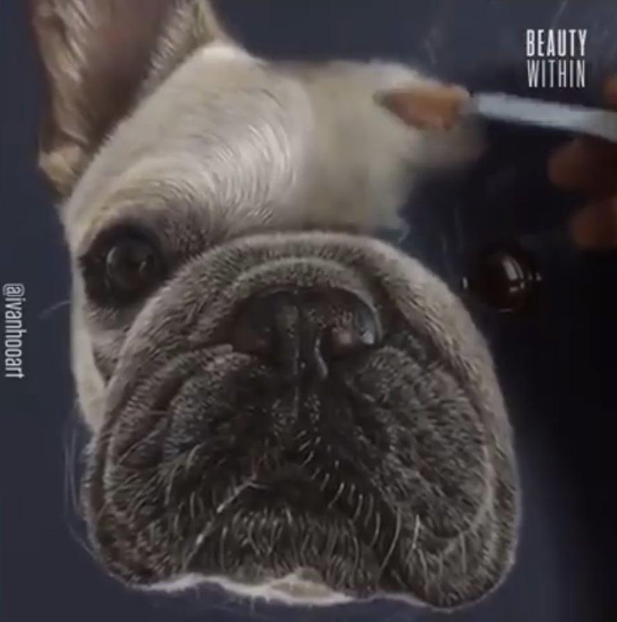 胡伊凡把狗狗也畫得維妙維俏。(授權影片截圖)