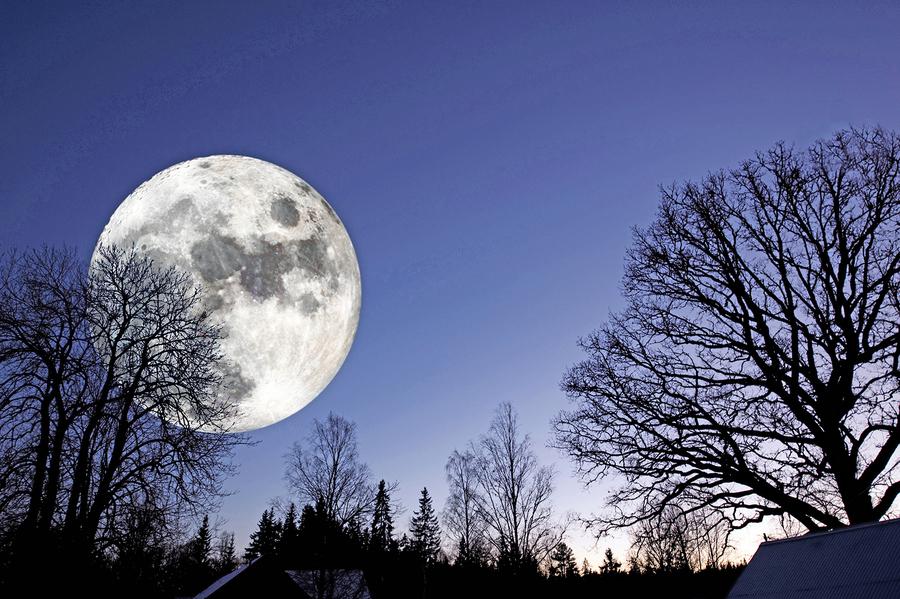 研究發現:史前人類用月亮計時