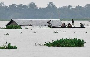豪雨肆虐 印度四十五人喪生 近七百萬人受影響