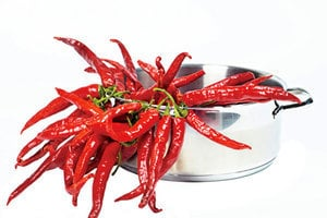 NASA擬在太空種辣椒 它將是第一個開花結果植物