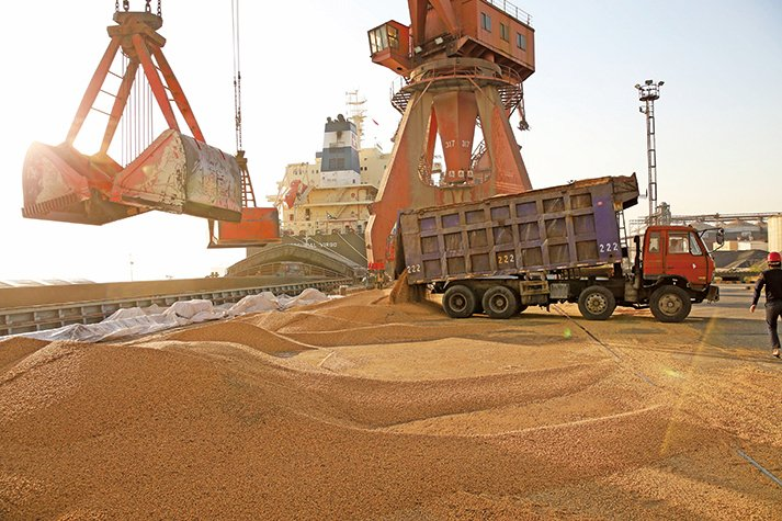 中方7月21日表示,一些中國公司有意從美國購買農產品,正在對擬採購的農產品向中共政府申請豁免加徵關稅。(AFP)