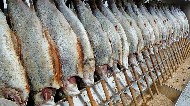 中國農民經常在骯髒的條件和環境下養殖魚類,並經常使用大劑量的抗生素來保持它們的存活。當人們吃了這種環境中養殖的鱈魚時,那些污染物和藥物最終會堆積在人們的體內。(Illustration – Pixabay | flyupmike)