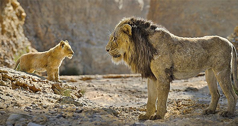 辛巴敬受父親獅王木法沙,木法沙亦諄諄教誨辛巴。