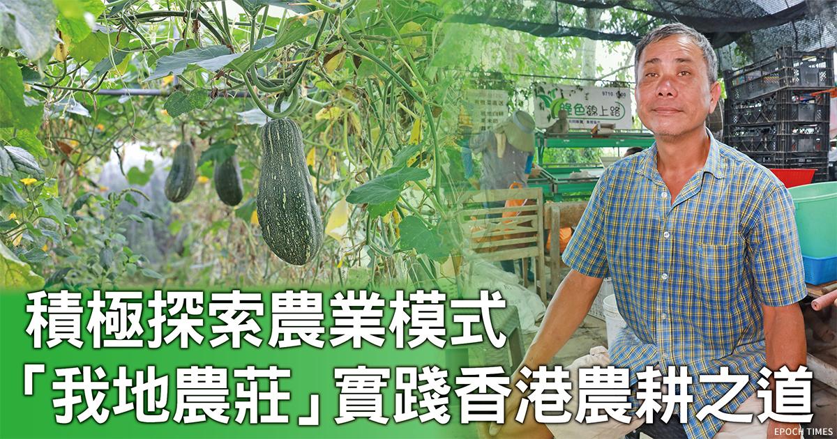香港早期從事有機耕種的農夫——黃零,相信農業應該重質量與產量。(設計圖片)