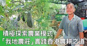 積極探索農業模式 「我地農莊」實踐香港農耕之道