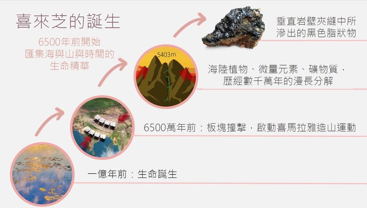 喜來芝是經過6500萬年天然生成的超強抗氧化及修護成份, 含有65-80%的天然富里酸,同時包括:硒、鉀、鈣、鎂等85種微量元素,其營養成分能全方位解決所有肌膚老化問題。