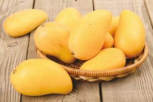 芒果抗癌、降血壓 卻傳言有「毒」 兩招破解