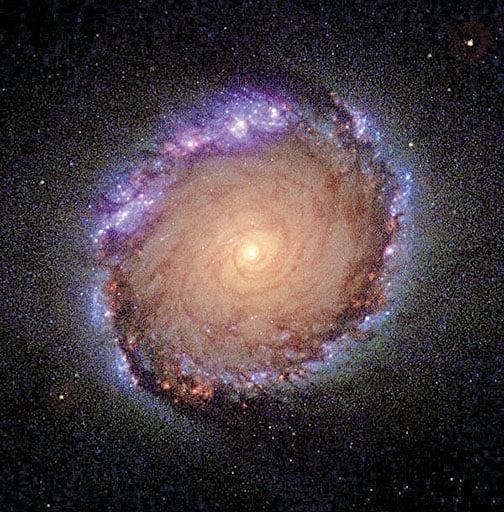 哈勃太空望遠鏡拍攝到的棒漩星系NGC 1512的核心區全彩影像。光環的直徑寬達2,400光年。(影像提供 : NASA, ESA, Dan Maoz)