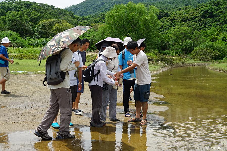 城市大學研究團隊舉辦水口海岸生態環境及萃取微塑膠考察活動,圖為參與者在水口灣考察。(曾蓮/大紀元)