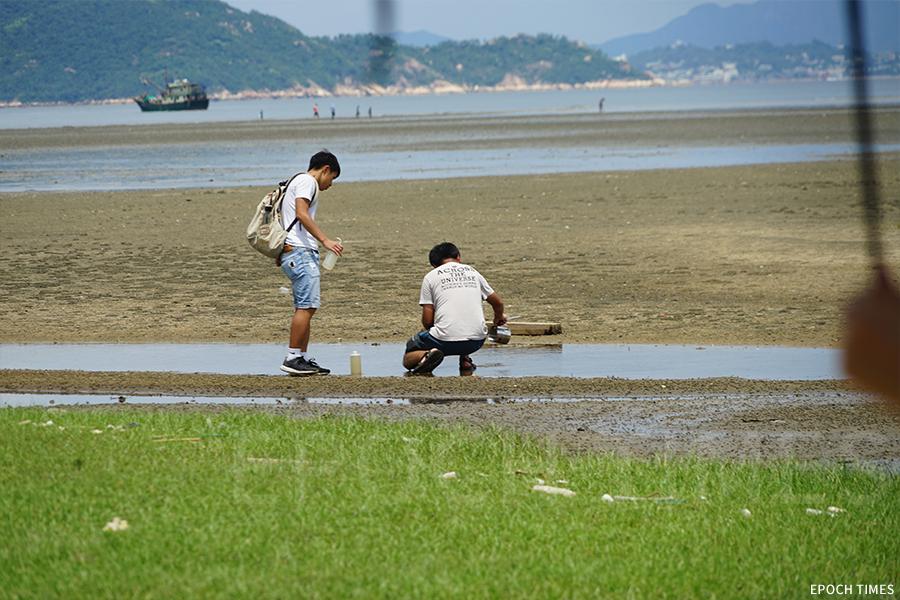 城市大學研究團隊在水口灣取樣,做微塑膠萃取實驗。(曾蓮/大紀元)