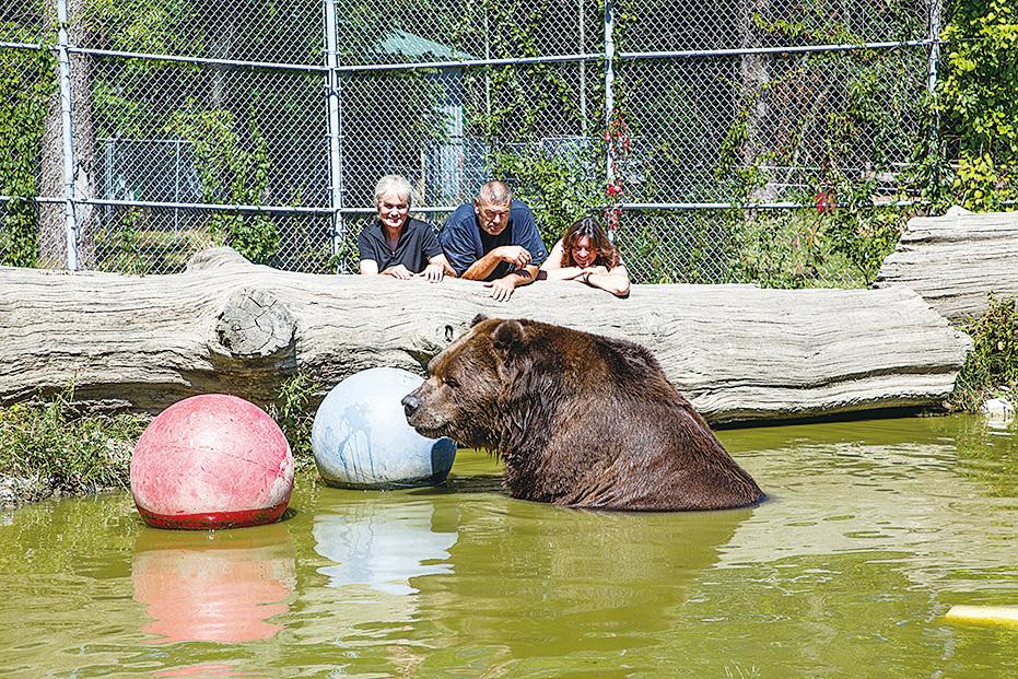22歲的Jimbo在紐約州的孤兒野生動物中心玩水。(Courtesy of James Smith)