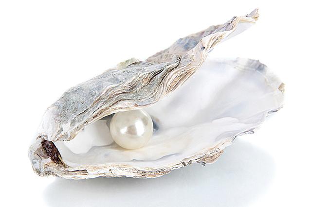 珍珠(Fotolia)
