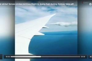美聯合航客機引擎遭鳥擊 緊急迫降悉尼