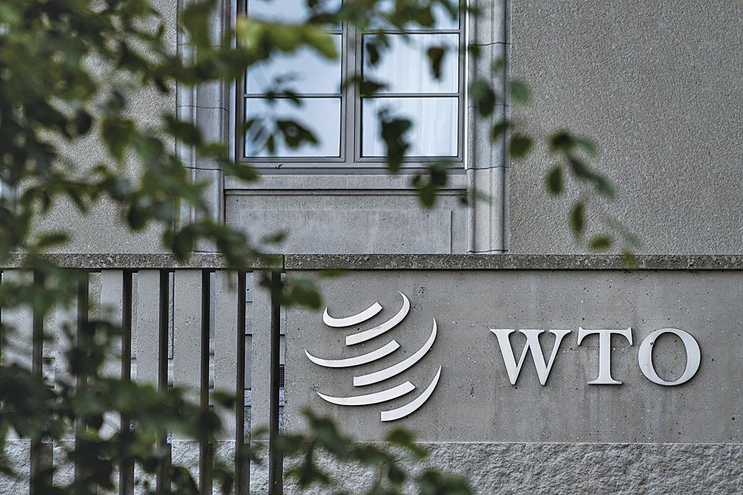 美國總統特朗普周二(8月13日)表示,如果世界貿易組織(WTO)情況沒有改善,美國可以考慮退出。(AFP)
