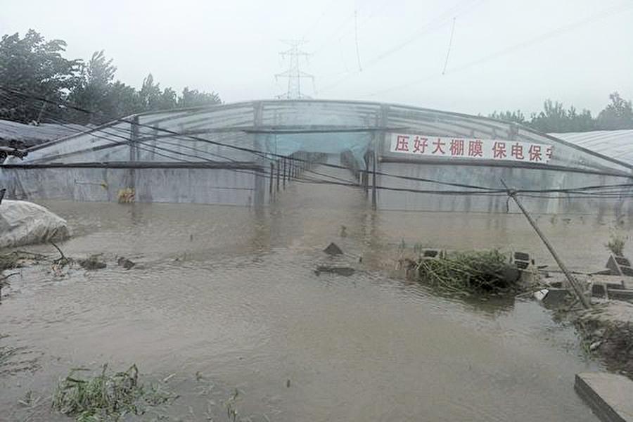 中國菜都遇強降水影響京蔬菜漲價30%