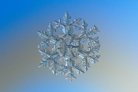 沒有兩片完全相同的雪花 展現奇妙微觀世界