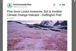 北極變為「血的世界」 警示人類氣候災難