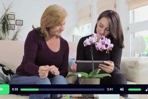新裝置讓你聆聽植物「說話」